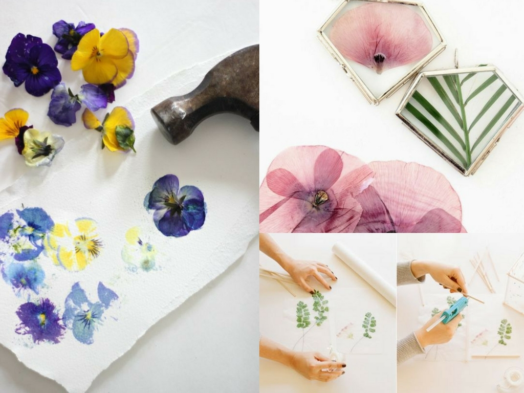 dried flower craft ideas 11 diy pressed flower projects for she 4286